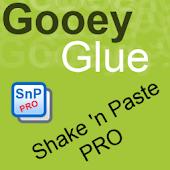 Shake 'n Paste Pro