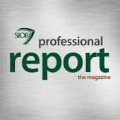 Prof. Report