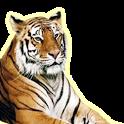 동물나라 icon
