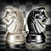 체스의 제왕