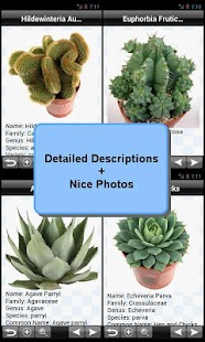Cactus Plant Encyclopedia