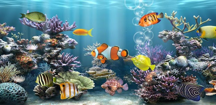 Fish aquarium free android apps on google play Aquarium free days