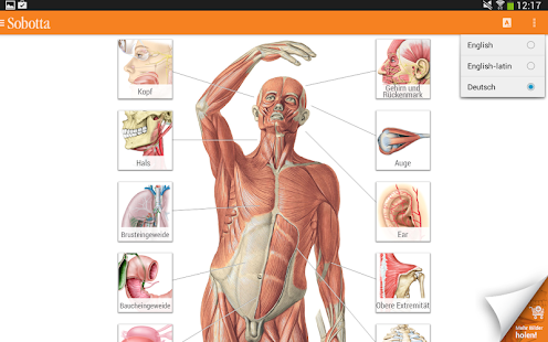 Sobotta Anatomie – Apps bei Google Play