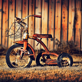 Nostalgia by Mike Ritchie - Artistic Objects Toys ( flash, old, red, bike, grass, white, dark, round, light, filter )