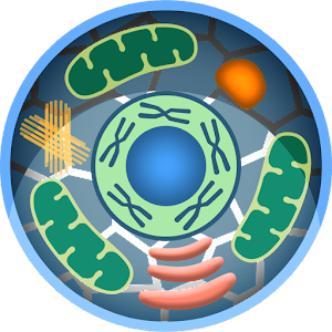 cell world android apps on google play