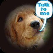 App Dog Lingo - talk to your dog APK for Windows Phone