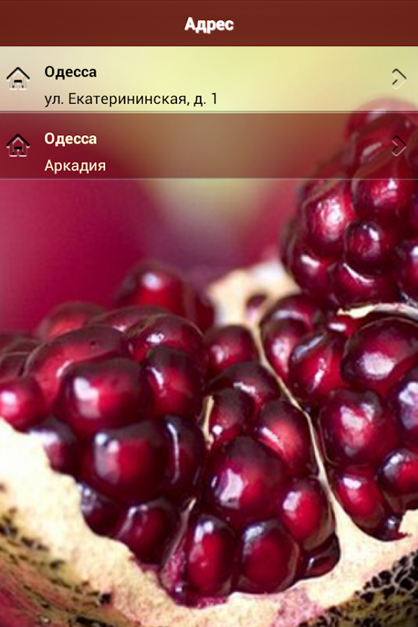 Granat Cafe Restaurant, Odessa- screenshot