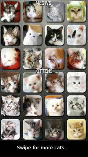 猫と子猫サウンドボード