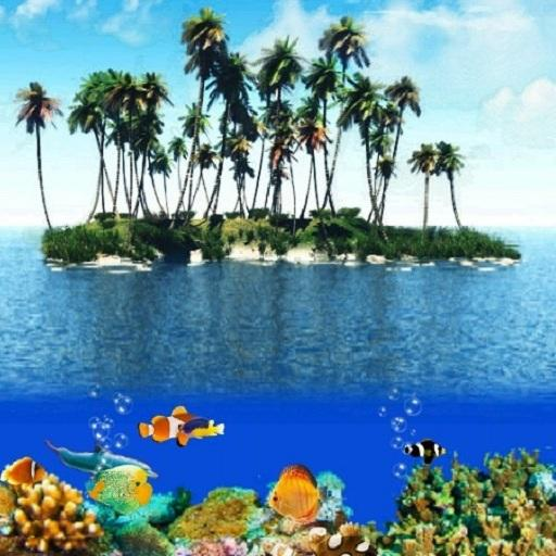3D Tropical Ocean Aquarium 休閒 App LOGO-APP試玩