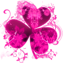 GO Launcher Theme Pink Flowers icon