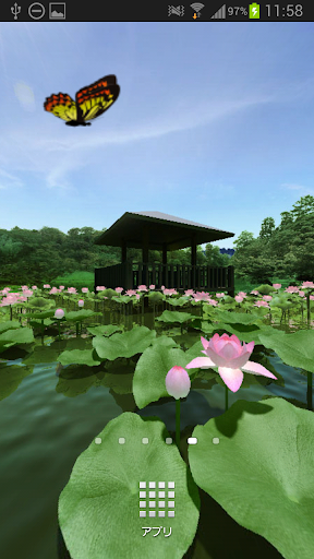 蓮の池360°