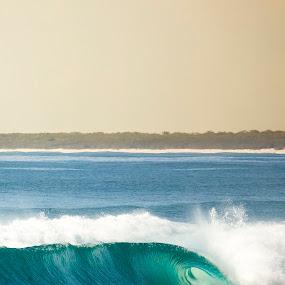 S A L T // by Cameron Watts - Landscapes Waterscapes ( water, sand, tube, waterscape, green, land, sea, ocean, seascape, fun, beach, landscape, portrait, cover, surfer, blue, emerald, wave, barrel, bar, surf, whale, rocks,  )
