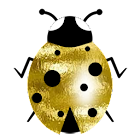 Good luck gold ladybird icon