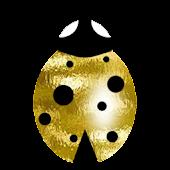 Good luck gold ladybird