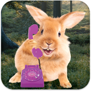Bunny Call Icon
