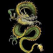 3D lucky dragon6