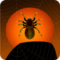 Halloween Spiders Free icon