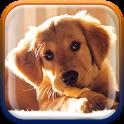 Cute Puppies Live Wallpaper icon