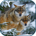 Wolves in winter icon