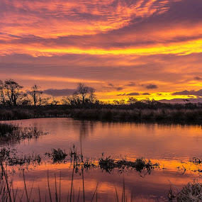 Anglesey Sunrise by Don Cardy - Landscapes Sunsets & Sunrises ( Earth, Light, Landscapes, Views,  )