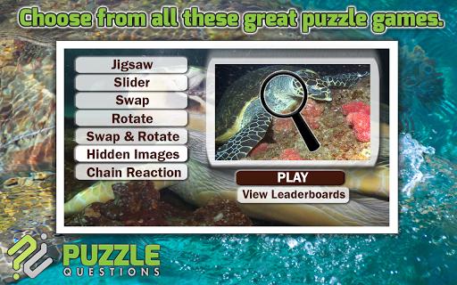 Free Ocean Turtles Puzzles