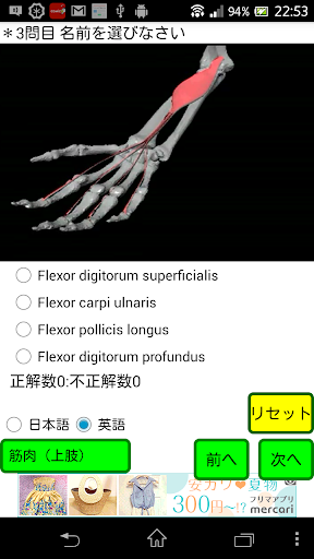 無料医疗Appのクイズ「解剖くん」|記事Game