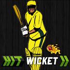 Hit Wicket Cricket Aussie Cup