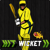 Game Hit Wicket Cricket Aussie Cup APK for Kindle