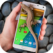 Lizard in phone funny joke for Lollipop - Android 5.0