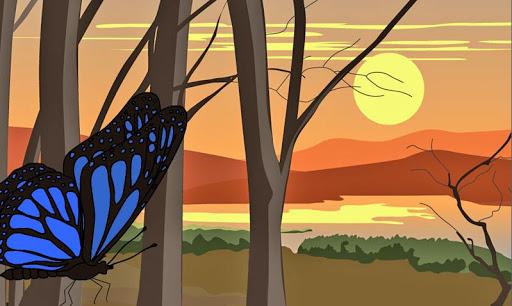 Mindfulness Animations