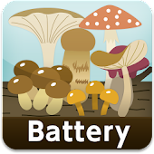 Mushroom Battery level widget