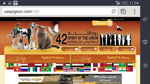 玩免費商業APP|下載UAE Pigeon app不用錢|硬是要APP