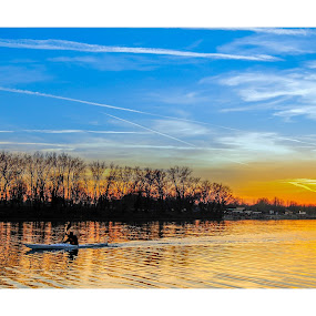Loner! by Marko Icelic - Landscapes Sunsets & Sunrises