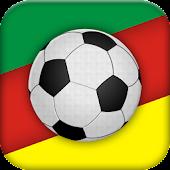 Campeonato Gaúcho 2013