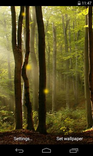 Fireflies Free Live Wallpaper