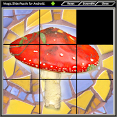 Magic Slide Puzzle Mushrooms 2