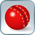 Practice Cricket logo