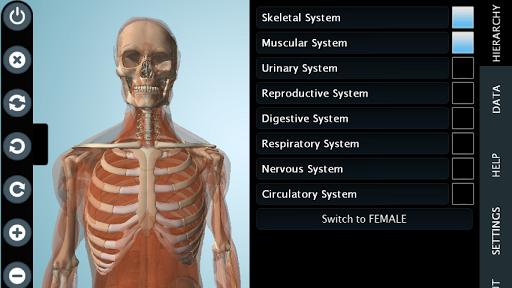 【免費醫療App】Male Anatomy 3D - Anatronica-APP點子