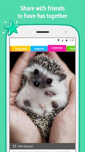 Catnip - screenshot thumbnail