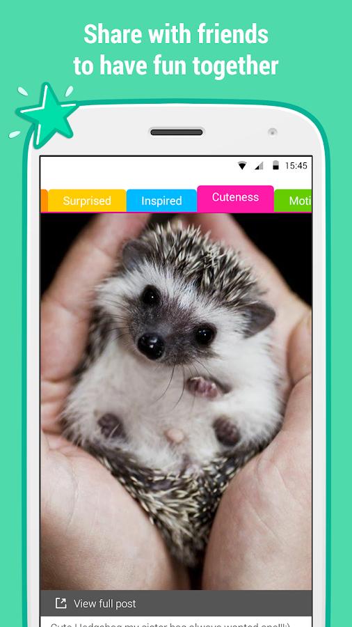 Catnip - screenshot