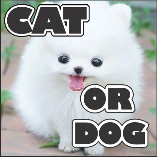 Cat Or Dog 益智 App LOGO-APP試玩