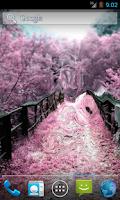 Screenshot of Magic Touch: The Sakura Garden