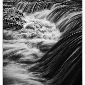 Aysgarth Falls by John Ash - Landscapes Waterscapes ( water, b&w, waterfall, white, aysgarth, black )