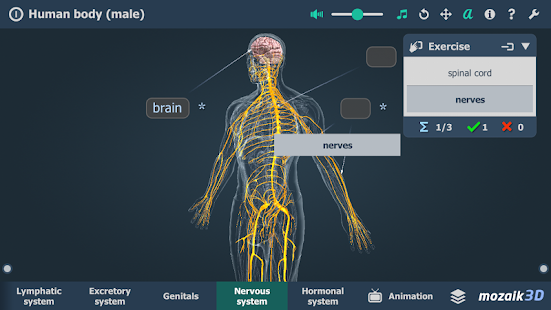 Human Body Male Educational Vr 3d Apps On Google Play