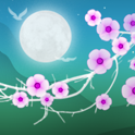 Blooming Night Pro Live WP icon