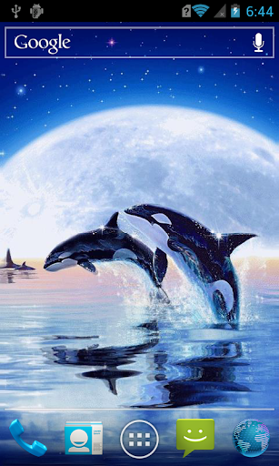 Dolphins at moonlit night LWP