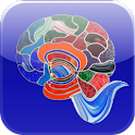 What Color is Your Brain? logo