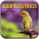 Best Bird Songs Ringtones icon