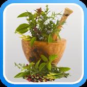 الطب بالأعشاب - الأعشاب الطبية