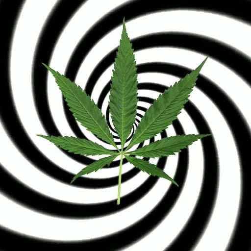 Hypnotic Weed Live Wallpaper Icon